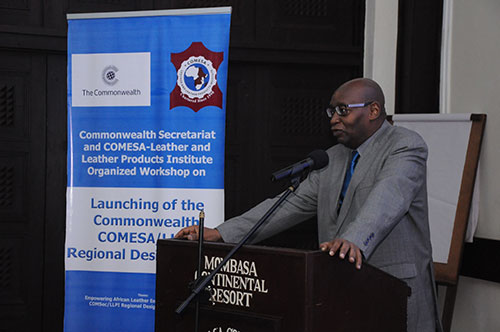 Prof.M. Mwinyihija, Executive Director of COMESA - Leather and Leather Products Institute, Making Preview of the LLPI's Role the RDS